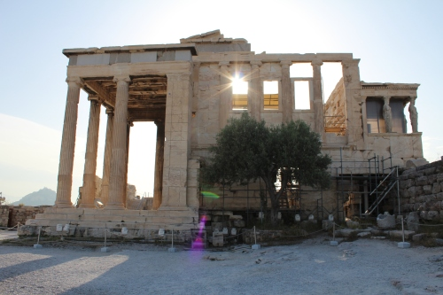 An olive tree stands where the sacred olive tree of Athena once stood in the Pandroseion, an open sanctuary dedicated to Pandrosos by the Erechtheion